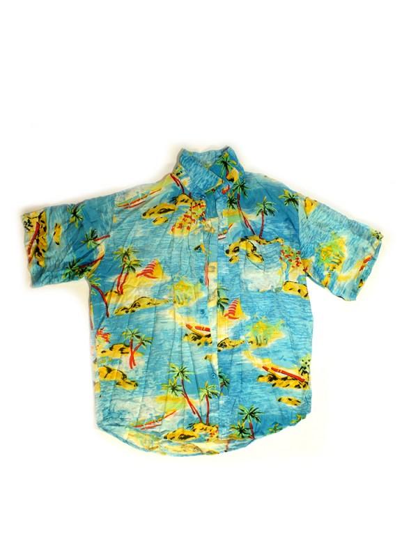 Viskoziniai marškiniai vyrams (L)